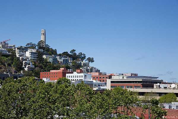 Photo #8 Views of Coit Tower from the main floor study.