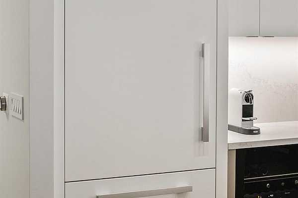 Photo #5 ...and the cabinet clad refrigerator.