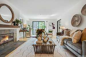 Browse active condo listings in NORTH BEACH